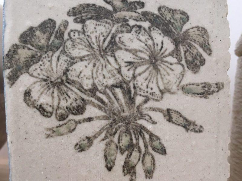 fond fleur imprimée