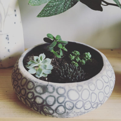 objet plante 2